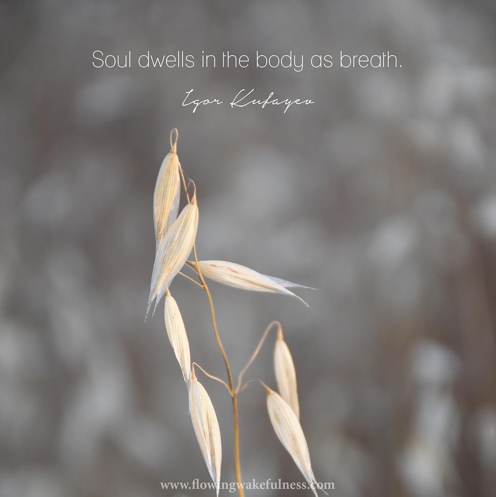 helena_soul dwells
